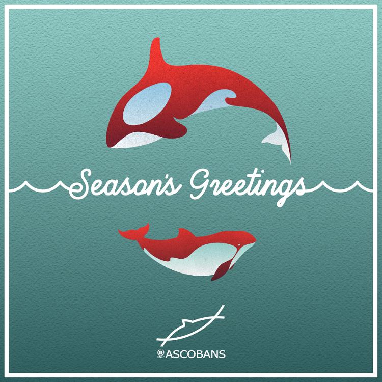 ASCOBANS Season's Greetings e-card 2020.  © ASCOBANS Secretariat