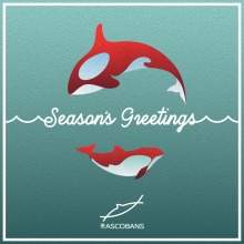 ASCOBANS Season's Greetings e-card 2020.  © ASCOBANS Secretariat